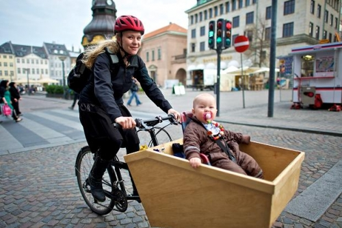 sop for moving around with children