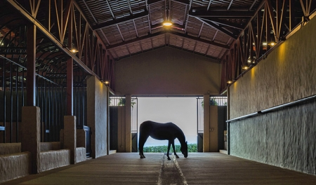 Stables-and-Horse